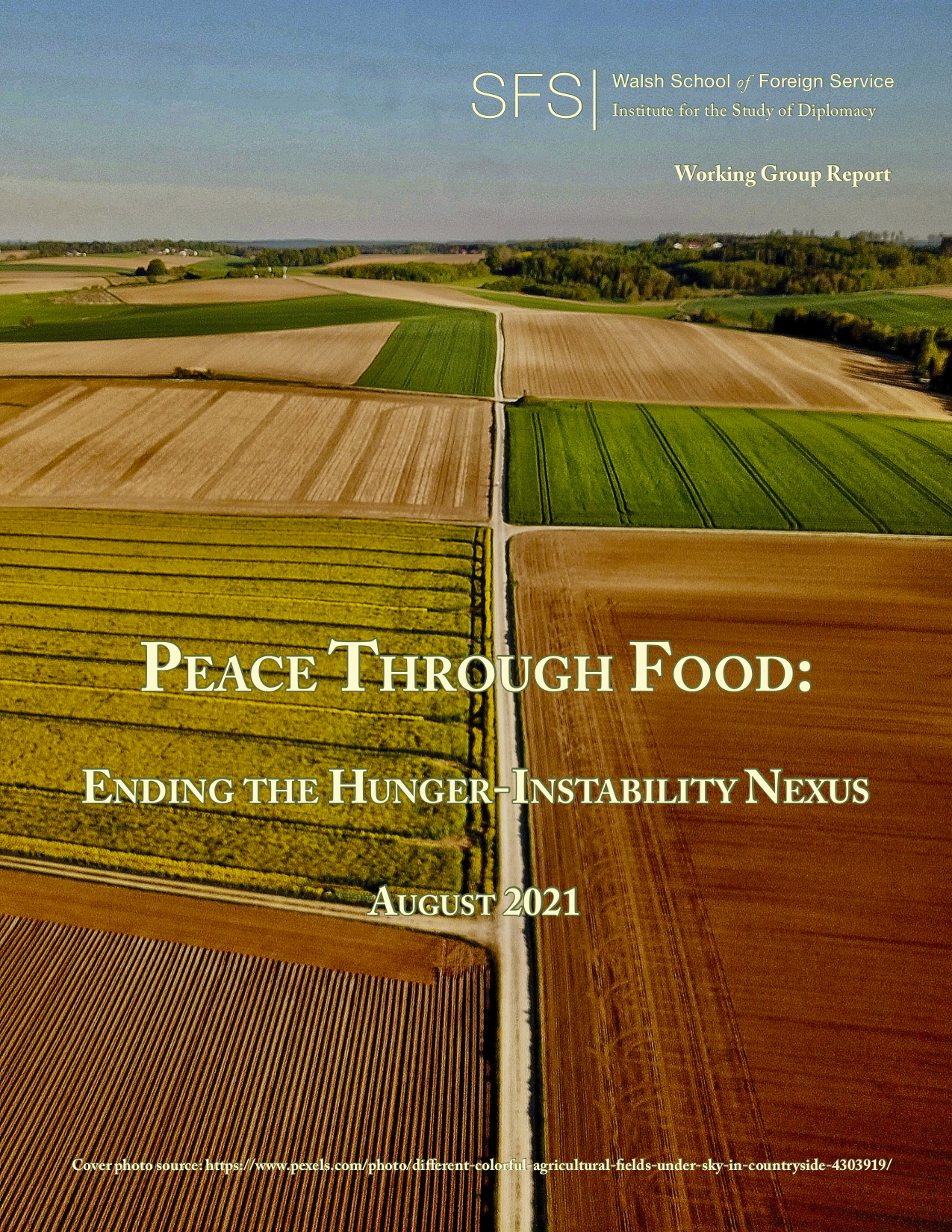 Peace Through Food: Ending the Hunger-Instability Nexus. Farmland with tracks between each field.